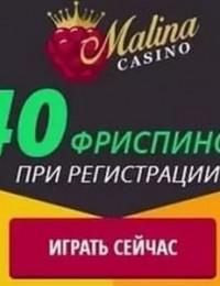 Malina casino. Что надо знать для того, чтобы выиграть?